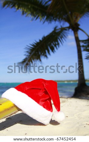 Santa hat on a beach, on palm tree background, closeup - stock photo