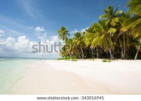 Saona Island in Punta Cana, Dominican Republic - stock photo