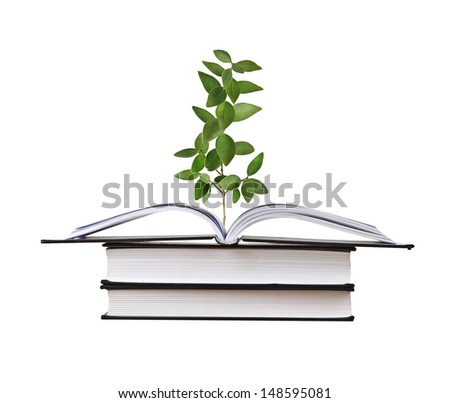 Sapling growing from book - stock photo