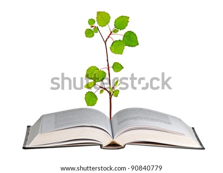 Sapling growing from book