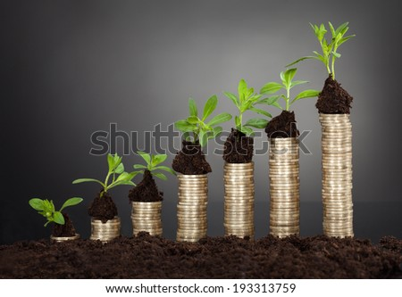 Saplings on stack of coins representing growth against black background - stock photo