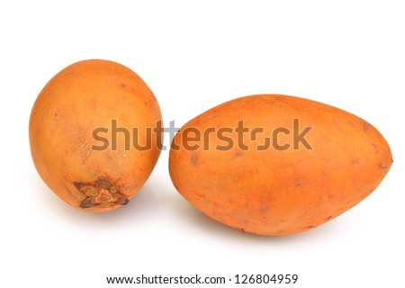 Sapodilla(manilkara zapota) on a white background close-up - stock photo