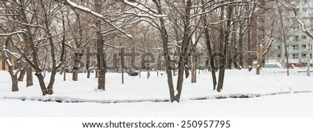 SAPPORO, HOKKAIDO, JAPAN - JANUARY 11, 2015: View of Hokkaido University Central lawn. Hokkaido University is one of the national universities of Japan.