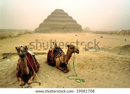 Saqqara, The Step Pyramid of Zoser, Egypt. - stock photo