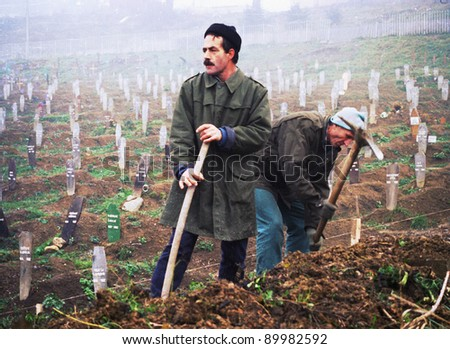 SARAJEVO, BOSNIA - DEC 24: Two gravediggers pick at the hard earth of the Lion Cemetery in Sarajevo, Bosnia, on Friday, December 24, 1993. The Bosnian capital has been under siege by Serb forces for one and a half years. - stock photo