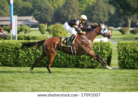 SARATOGA SPRINGS - August 24: Kent J. Desormeaux Aboard Sandstorm Cat Wins the Seventh race August 24, 2008 in Saratoga Springs, NY.