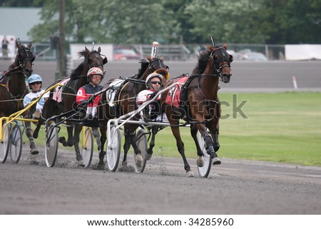 Harness Racing Stock Images Royalty Free Images Amp Vectors
