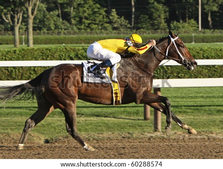 SARATOGA SPRINGS, NY - AUG 29: Horse of the Year Rachel Alexandra races to a 2nd place finish in The Personal Ensign Stakes at Saratoga Race Course on Aug 29, 2010 in Saratoga Springs, NY. - stock photo