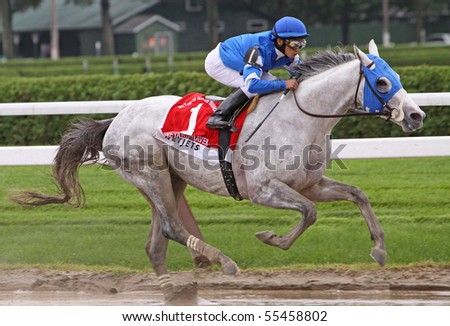 SARATOGA SPRINGS, NY - AUG 29: Vineyard Haven, Alan Garcia up, finishes 2nd in The King's Bishop Stakes at Saratoga Race Course on Aug 29, 2009 in Saratoga Springs, NY. - stock photo