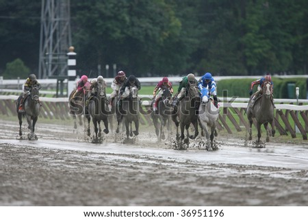 "SARATOGA SPRINGS, NY- AUG 29:Vineyard Haven (2nd fr R) A. Garcia fouls ""Capt. Candyman Can"" (3rd fr R) in the Stretch of the Kings Bishop at Saratoga Race Track August 29, 2009 in Saratoga Springs, NY"