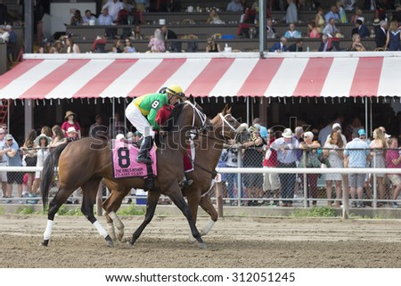 SARATOGA SPRINGS, NY - August 29, 2015: Classy Class in the Post Parade for the King's Bishop Stakes on Travers Day at Historic Saratoga Race Course on August 29, 2015 Saratoga Springs, New York - stock photo