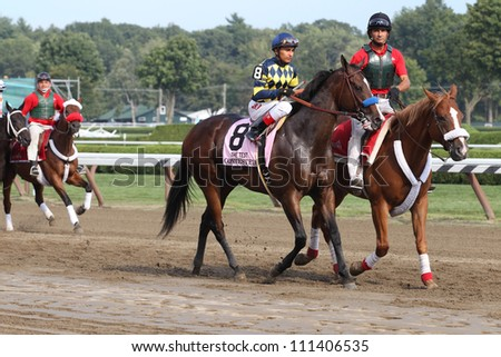 SARATOGA SPRINGS, NY - AUGUST 25: Contested with Rafael Bejarano aboard in the post parade for the Grade I TEST STAKES on August 25, 2012 Saratoga Springs, New York