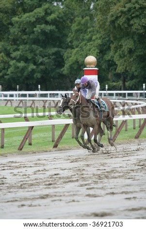 "SARATOGA SPRINGS, NY- AUGUST 29: ""El Primero"" outside and ""three Day Rush"" on the rail return to be unsaddled after the 8th at Saratoga Race Track, August 29, 2009 in Saratoga Springs, NY. - stock photo"