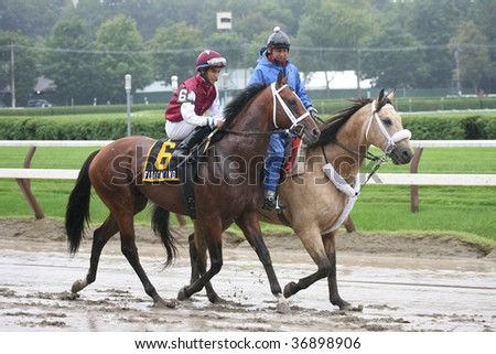 "SARATOGA SPRINGS, NY- AUGUST 29:  ""Florentino (JPN)"" with Alan Garcia aboard in the post parade for the LURE Stakes at Saratoga Race Track, August 29, 2009 in Saratoga Springs, NY."