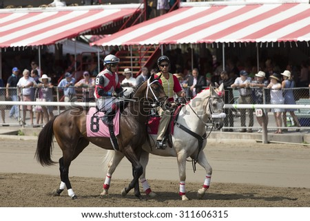 SARATOGA SPRINGS, NY - August 29, 2015: #8 Grand Candy with J.L. Ortiz in  post parade for 4th race on Travers Day at Historic Saratoga Race Course on August 29, 2015 Saratoga Springs, New York - stock photo