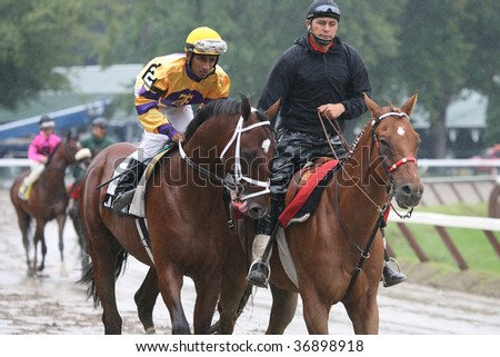 "SARATOGA SPRINGS, NY- AUGUST 29:  ""Jack Spratt"" with Rajiv maragh aboard in the post parade for the LURE Stakes at Saratoga Race Track, August 29, 2009 in Saratoga Springs, NY."