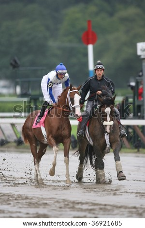 """SARATOGA SPRINGS, NY- AUGUST 29: """"Moonlark"""" with Jamie Theriot aboard in the post parade for the 8th at Saratoga Race Track, August 29, 2009 in Saratoga Springs, NY. - stock photo"""