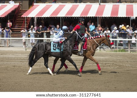 SARATOGA SPRINGS, NY - August 29, 2015: #9 Ready Dancer ridden by John Velazquez before the  2nd race on Travers Day at Historic Saratoga Race Course on August 29, 2015 Saratoga Springs, New York - stock photo