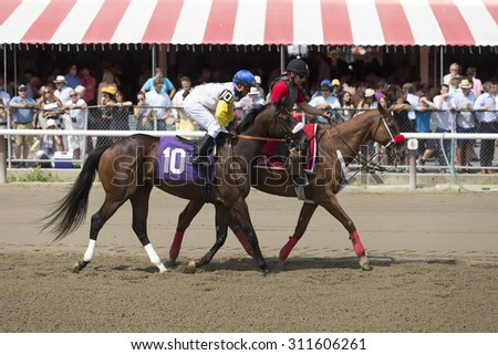SARATOGA SPRINGS, NY - August 29, 2015: #10 Tale of S'avall ridden by C. Velasquez before the 4th race on Travers Day at Historic Saratoga Race Course on August 29, 2015 Saratoga Springs, New York - stock photo