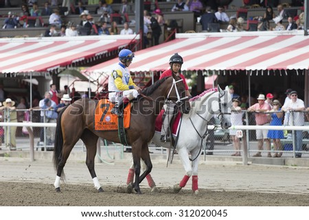 SARATOGA SPRINGS, NY - August 29, 2015: Unbridled Forever in the Post Parade for the Ballerina Stakes on Travers Day at Historic Saratoga Race Course on August 29, 2015 Saratoga Springs, New York - stock photo