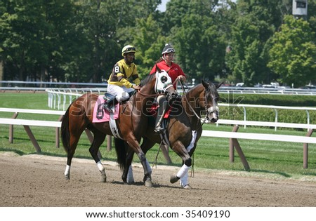 "SARATOGA SPRINGS, NY- AUGUST 15: ""West Hampton"" with Rajhiv Matagah aboard in the post parade for the second race at Saratoga Race Track, August 15, 2009 in Saratoga Springs, NY."