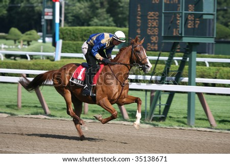 "SARATOGA SPRINGS, NY- AUGUST 7:  18 year old ""John's Call"" gallops after the post parade for the John's Call Stakes at Saratoga Race Track, August 7, 2009 in Saratoga Springs, NY. - stock photo"