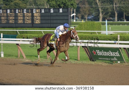 """SARATOGA SPRINGS, NY- SEPT 7: Jamie Theriot aboard """"Dublin"""" has the lead in the stretch of the Grade I Hopeful Stakes at Saratoga Race Track, September 7, 2009 in Saratoga Springs, NY. - stock photo"""