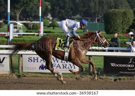 "SARATOGA SPRINGS, NY- SEPT 7: Jamie Theriot aboard ""Dublin"" Wins the Grade I Hopeful Stakes at Saratoga Race Track, September 7, 2009 in Saratoga Springs, NY. - stock photo"