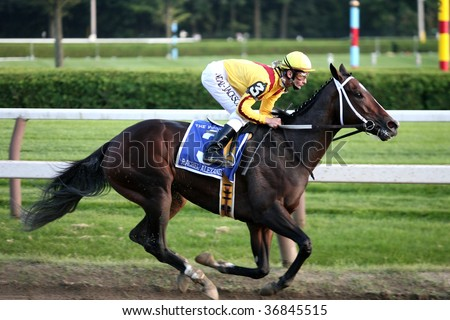 "SARATOGA SPRINGS, NY- SEPT 5: ""Rachel Alexandra"" with Calvin Borel aboard leads in the stretch the Grade I Woodward Stakes at Saratoga Race Track, September 5, 2009 in Saratoga Springs, NY."
