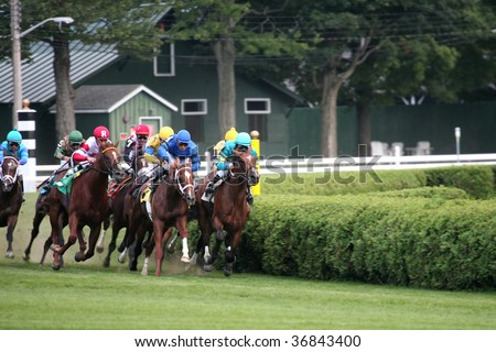 "SARATOGA SPRINGS, NY- SEPT 5: ""The field turns for home in the 5th race at Saratoga Race Track, September 5, 2009 in Saratoga Springs, NY."