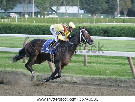 "SARATOGA SPRINGS - SEPT 5: Jockey Calvin Borel riding ""Rachel Alexandra"" to victory in the Woodward at Saratoga Race Track, September 5, 2009 in Saratoga Springs, NY - stock photo"