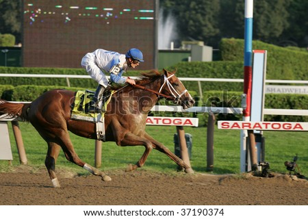 """SARATOGA SPRINGS - SEPT 7: Jockey Jamie Theriot rides """"Dublin"""" to victory in the Grade 1 Hopeful at Saratoga Race Track, September 7, 2009 in Saratoga Springs, NY - stock photo"""