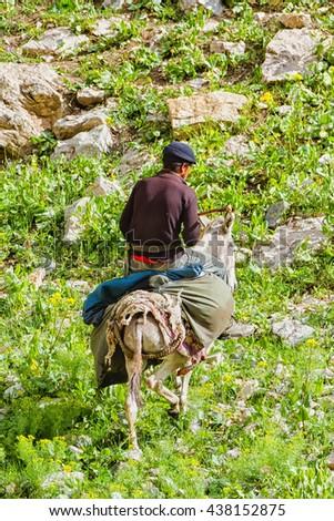 SARYTAG, TAJIKISTAN - AUGUST 5, 2015: Donkey caravan in remote Asian mountain area. Fan Mountains, Pamir, Tajikistan - stock photo