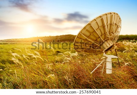Satellite antenna in the wilderness, sunset in grassland and reeds. - stock photo