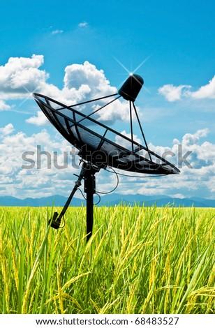 satellite dish antennas in field under sky - stock photo