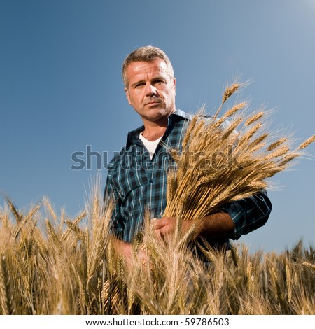 Satisfied mature farmer looking at camera with a bunch of ripe wheat after a working day - stock photo