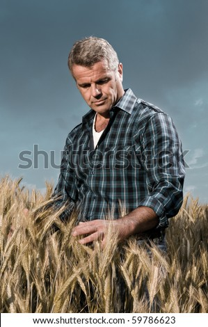 Satisfied mature farmer touching with care his ripe wheat field before the harvest, dramatic light - stock photo