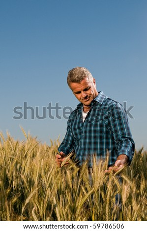 Satisfied mature farmer touching with care his ripe wheat field before the harvest, vertical copy space - stock photo