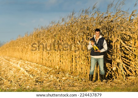 Satisfied young farmer holding corncobs in corn field - stock photo