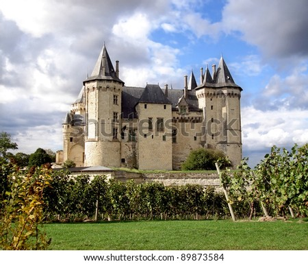 Saumur Chateau with dramatic sky behind and grapevines in the foreground