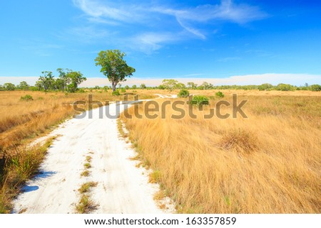 Savannah Landscape in Southern of Thailand near Phuket - stock photo