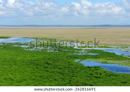 Savannah landscape in the national park in kenya - stock photo