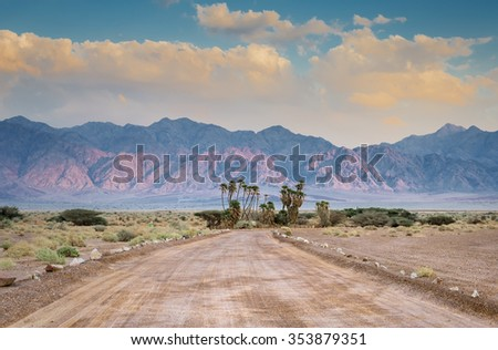 Savannah valley of Arava desert with endemic doum palms. The photo was taken in the Israeli National Reserve park Evrona near a border between Israel and Jordan - stock photo