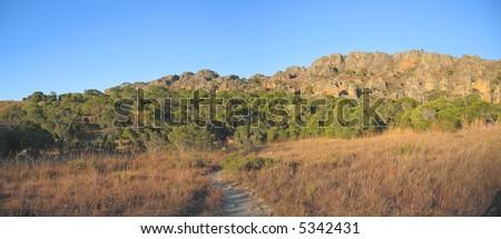 Savannah with mountains - Isalo park - Madagascar - Panoramique. - stock photo