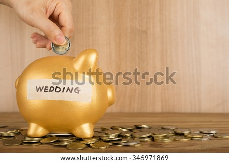 Save money for wedding with piggy bank concept. - stock photo