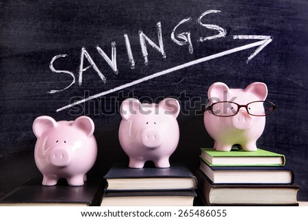 Save money, growth, piggy bank - stock photo