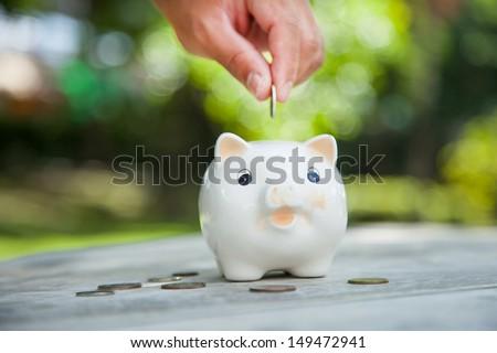 Saving money concept. Piggy bank. - stock photo