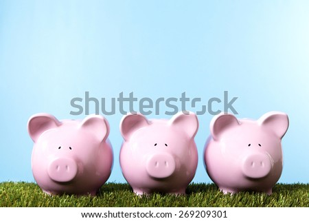Saving money, row of piggy banks, grass and blue sky  - stock photo