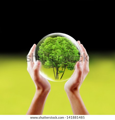 Saving nature concept. Hands holding a tree in a protected bubble. - stock photo