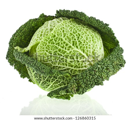 Savoy Cabbage head Isolated on White Background - stock photo